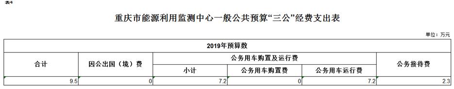 重庆市能源利用监测中心2019年部门预算情况说明